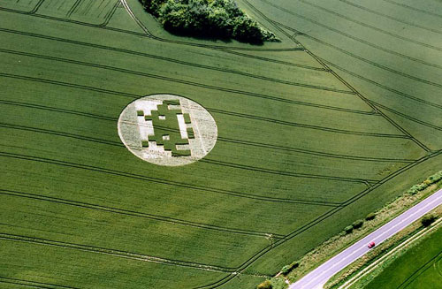 Spaceinvadercropcircle